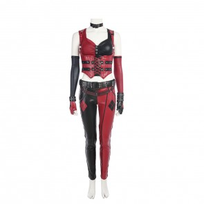 Batman: Arkham City Harley Quinn Cosplay Costume