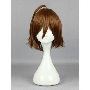 Brown 35cm Akame ga Kill! Tatsumi Cosplay Wig