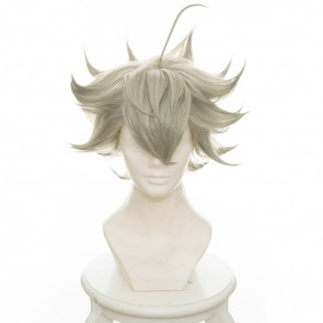 Grey 35cm Black Clover Asta Cosplay Wig