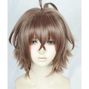35cm Fate/Apocrypha Sieg Cosplay Wig
