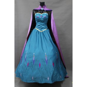 Frozen Queen Elsa Dress Cosplay Costume