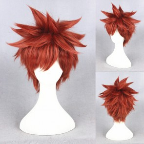 Red 30cm Fate/stay night Shiro Emiya Cosplay Wig