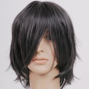 Dark Silver Grey Noctis Lucis Caelum Cosplay Wig