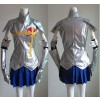 Fairy Tail Erza Scarlet Cosplay Costume - Standard Edition