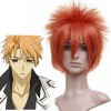 Orange 30cm Vampire Knight Akatsuki Kain Cosplay Wig